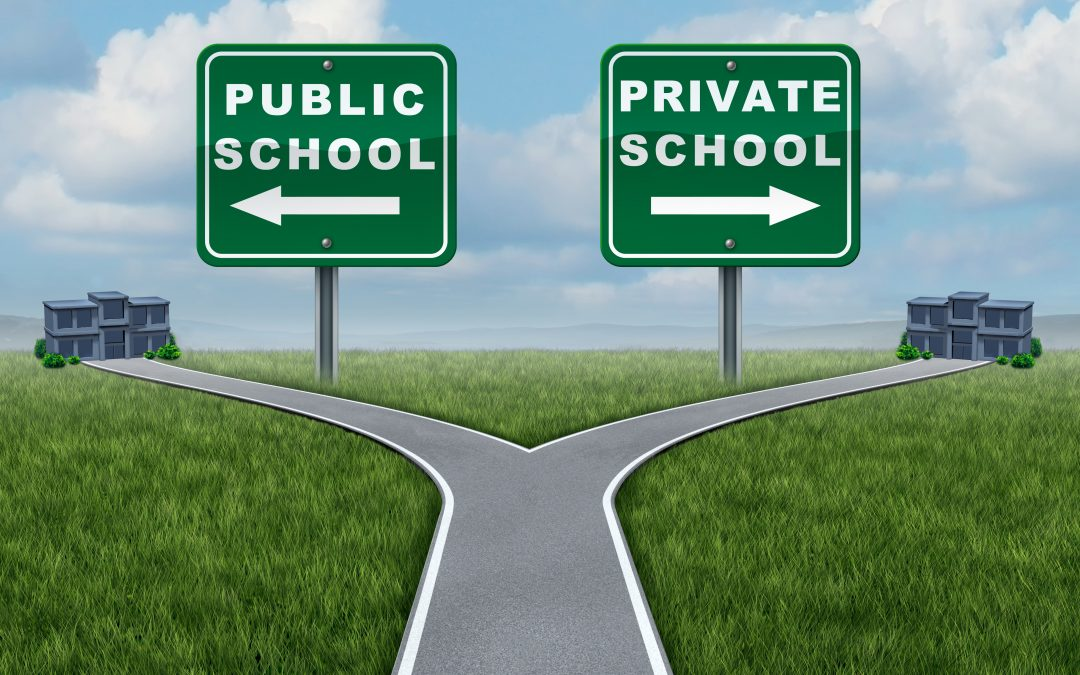 similarities between public and private schools