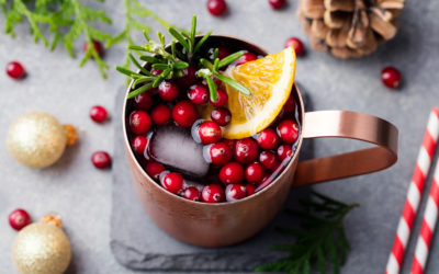 Christmassy Cranberry Moscow Mule